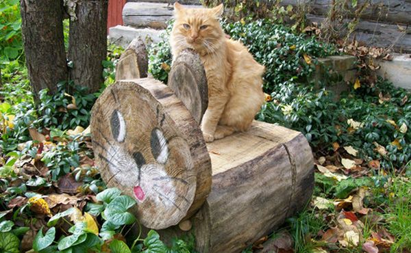 скамейка кот