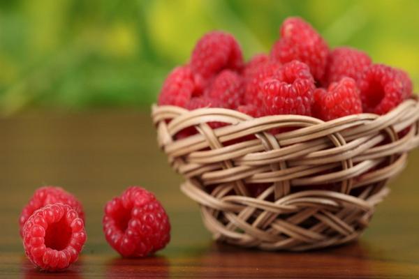 ягоды малины Бабье лето
