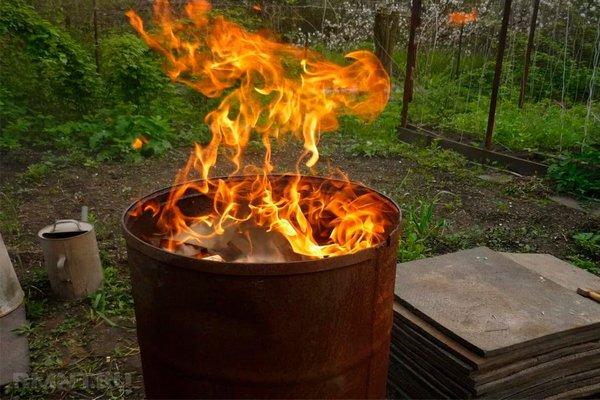 сжигание зараженных листьев