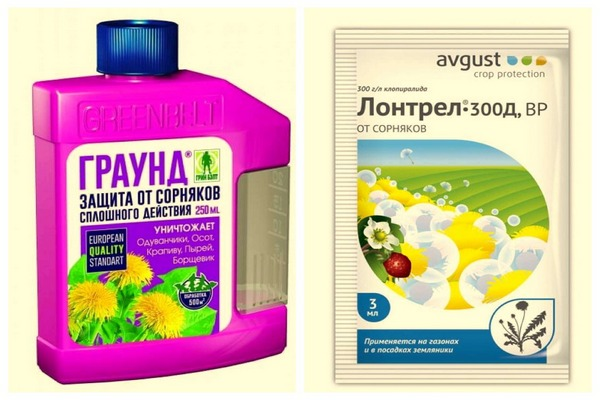 препараты против хвоща