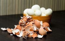 Скорлупа от яиц