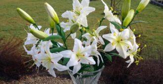 Выкапывать лилии и как хранить